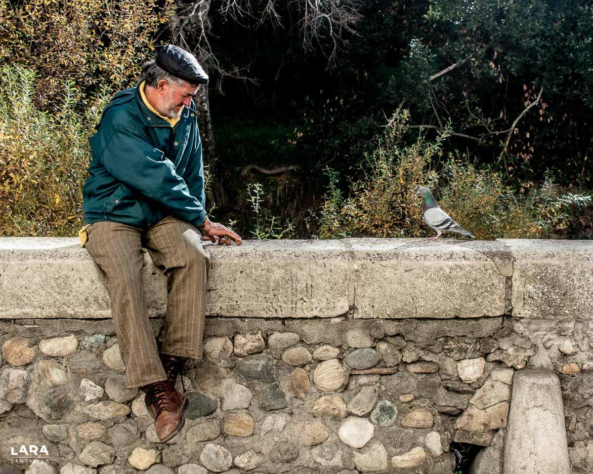 Hombre con paloma